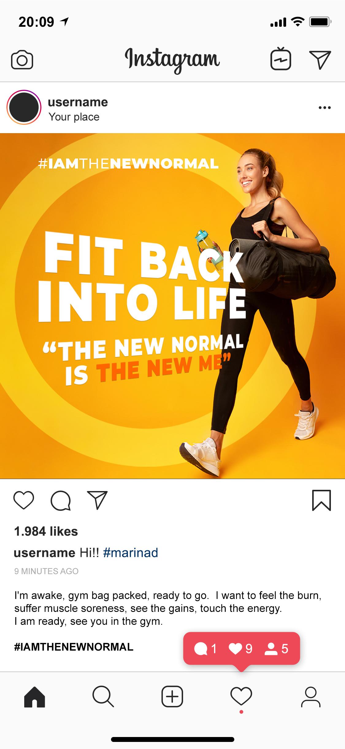 Instagram-Feed-